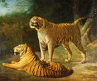名画絵画のプリント作品販売 ジャック=ローラン・アガセ Jacques-Laurent AgasseのA Tiger and Tigress at the Exeter 'Change Menagerie' in 1808. 1808